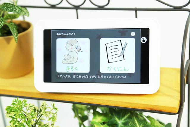 Echo Show 5のおすすめスキル「あかちゃんきろく」